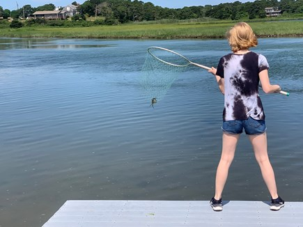 West Chatham in Hardings Beach Cape Cod vacation rental - Kids love the dock, a 5 minute walk. Kayak to the beach.