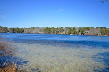 Orleans Cape Cod vacation rental - Literally steps to Crystal Lake - View from home