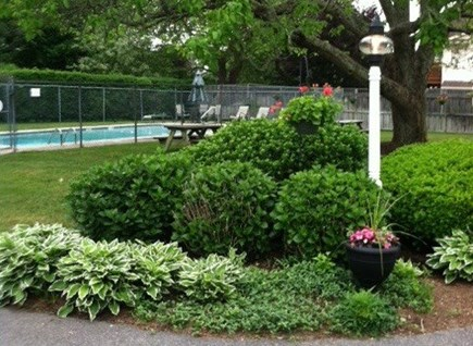 harwichport Cape Cod vacation rental - Picnic pool area
