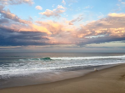 East Orleans Cape Cod vacation rental - Beautiful Nauset Beach two miles away (photo: owner)