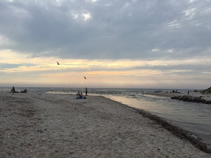 Falmouth Cape Cod vacation rental - Search for crabs, snails, shells on Wood Neck Beach