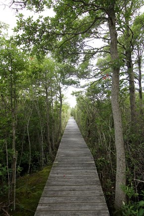 Brewster Cape Cod vacation rental - Boardwalk to private beach