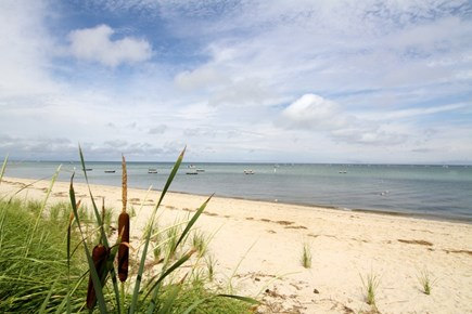 Brewster Cape Cod vacation rental - Your private beach awaits you