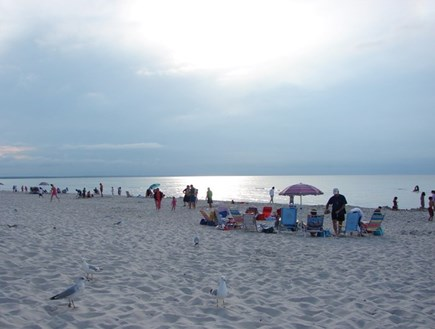 Yarmouth Cape Cod vacation rental - Enjoy the day at Mayflower beach!