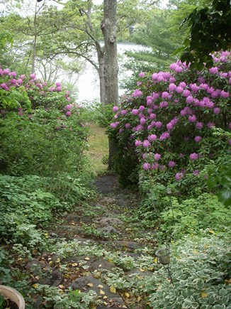 Falmouth Cape Cod vacation rental - Steps to the beach