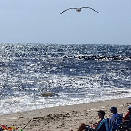 Dennis Port Cape Cod vacation rental - One minute walk to Nantucket Sound private beach!