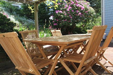 North Truro Cape Cod vacation rental - The side patio has seating for up to 8 under a lovely grape arbor