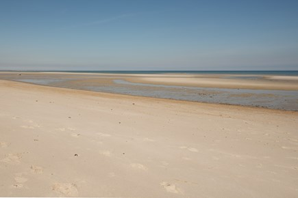 Dennis, Mayflower Beach Cape Cod vacation rental - Bay beach (seen here at low tide) is just 200 yards away!