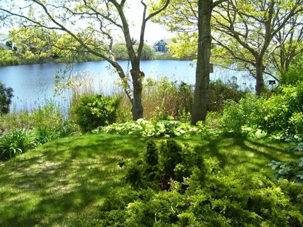 Hyannis Cape Cod vacation rental - Beautiful garden overlooking the freshwater piond