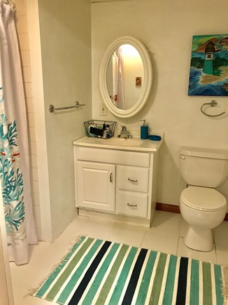 Falmouth Cape Cod vacation rental - Lower level full bath