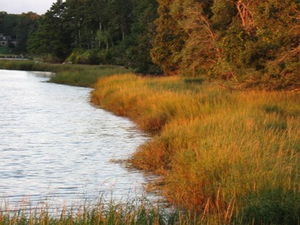 Orleans Cape Cod vacation rental - Marsh grass on Pleasant Bay in the fall at the end of Higgins Way