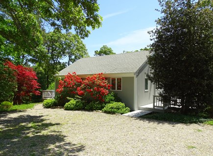 Orleans Cape Cod vacation rental - The cottage on a June day