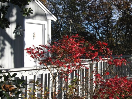 Orleans Cape Cod vacation rental - Front of cottage on a lovely early September morning