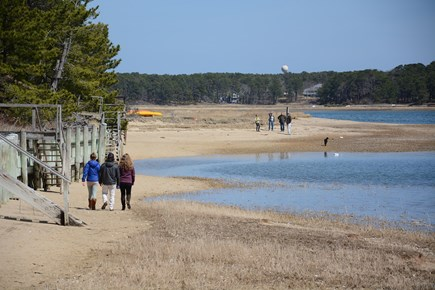 South Wellfleet Cape Cod vacation rental - Our local Pleasant Point Beach
