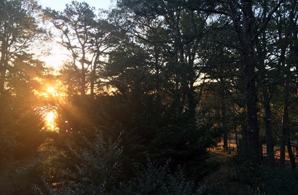 South Wellfleet Cape Cod vacation rental - Sunrise from our Deck looking to Drummer Cove