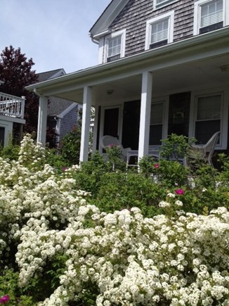 Provincetown Cape Cod vacation rental - June at the Farmhouse
