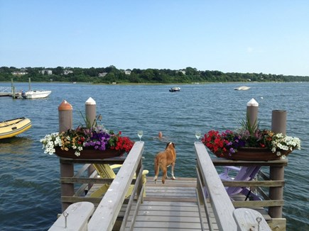 Eastham Cape Cod vacation rental - Stunning luxury waterfront with private dock