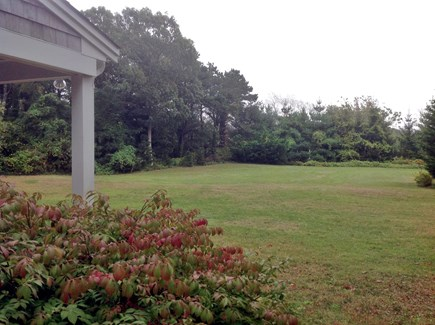 Chatham Cape Cod vacation rental - Large front yard