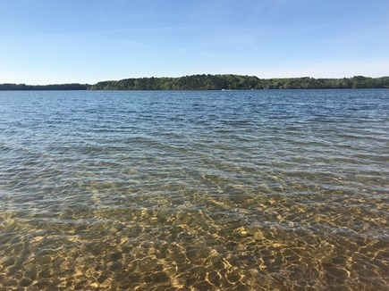 Harwich Cape Cod vacation rental - Our cal de sac has a small private beach right on Long Pond.