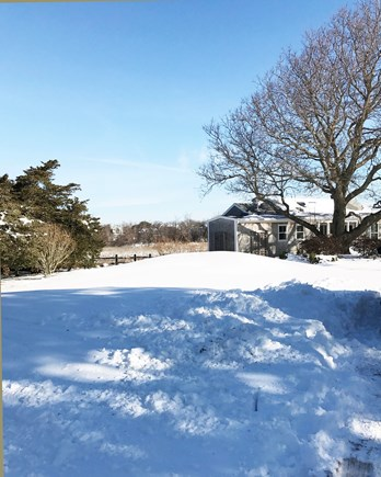 Brewster Cape Cod vacation rental - The house is fun in the winter but nicer in the summer.