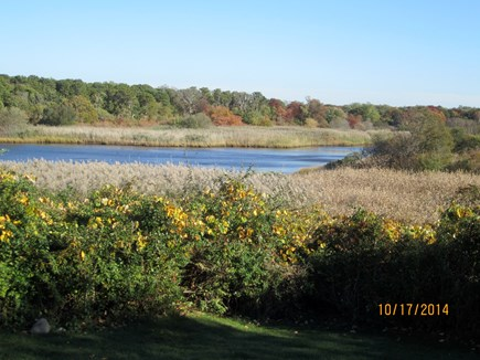 Brewster Cape Cod vacation rental - Freemans Pond, next to the sunporch