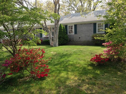 North Falmouth Cape Cod vacation rental - Quiet location at the end of cul-de-sac
