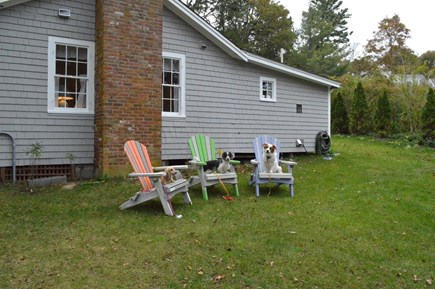 East Orleans Cape Cod vacation rental - Private back yard for relaxing.
