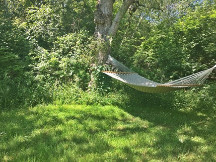 Brewster Cape Cod vacation rental - Hammock nook in the backyard