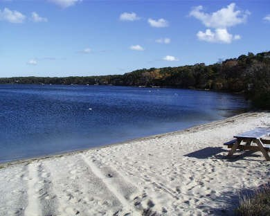 Harwich Cape Cod vacation rental - Long Pond Beach - just 1/4 mile from the house and lovely!
