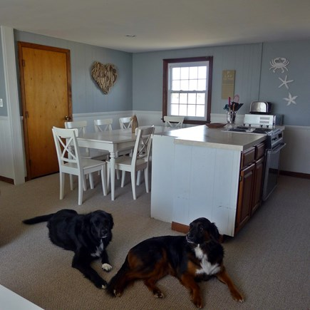 Eastham Cape Cod vacation rental - Kitchen and dining area, we are pet friendly too!
