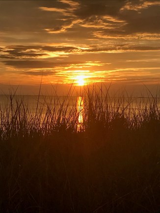 Eastham Cape Cod vacation rental - Front Row Seat