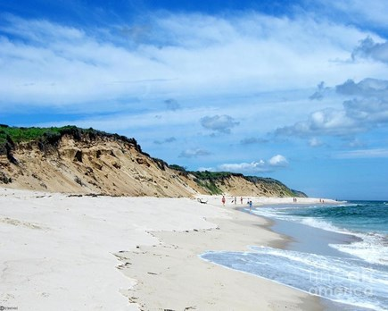 Eastham Cape Cod vacation rental - Nearby Coast Guard Beach: rated one of the world's best beaches