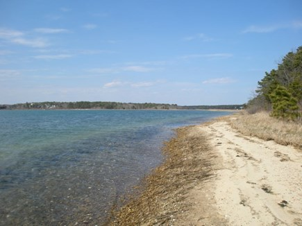 Cotuit Cotuit vacation rental - The beach is down a short path from the house. Great to explore.
