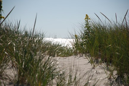 Hyannis Cape Cod vacation rental - Private Beach entrance