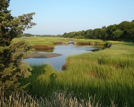 Barnstable Village Cape Cod vacation rental - Put your kayak in the marsh just down the road