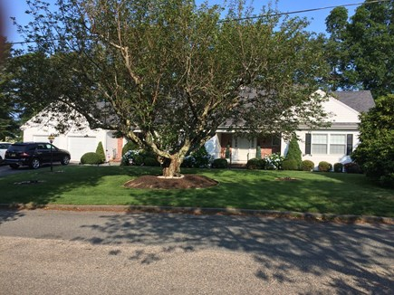 Falmouth Cape Cod vacation rental - Beautiful home! A walk to town center. 1.5 miles to the beach!