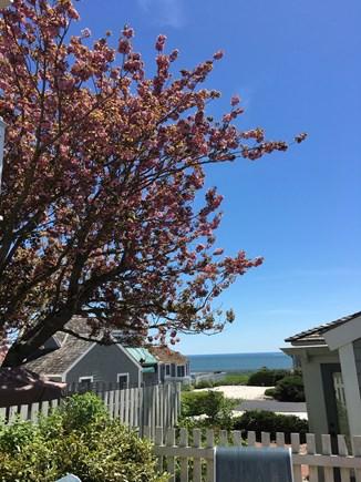 New Seabury, Mashpee New Seabury vacation rental - Ocean view from patio