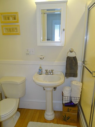 Orleans Cape Cod vacation rental - First floor master bathroom en suite with shower