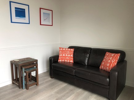 Provincetown Cape Cod vacation rental - Living room with pullout couch (full) and large screen TV