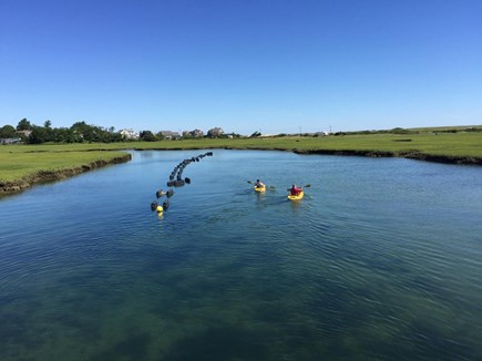 Sandwich, Town Neck Cape Cod vacation rental - Kayaks in Old Harbor Creek
