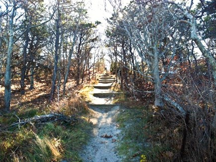 Brewster Cape Cod vacation rental - Path to beach