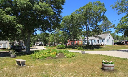 Hyannisport Cape Cod vacation rental - The grounds are landscaped to reflect natural beauty of Cape Cod.