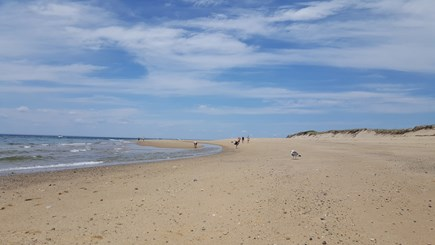 Provincetown Cape Cod vacation rental - The beach at Race Point.  Easy to see whales and seals here.