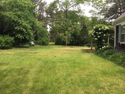 Wellfleet Cape Cod vacation rental - Front Yard