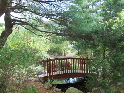 West Falmouth Cape Cod vacation rental - Ornamental Pond