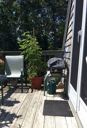 Orleans Cape Cod vacation rental - The deck is available for sunning or grilling.