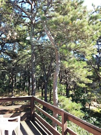 Wellfleet Cape Cod vacation rental - Spacious deck nestled in the trees