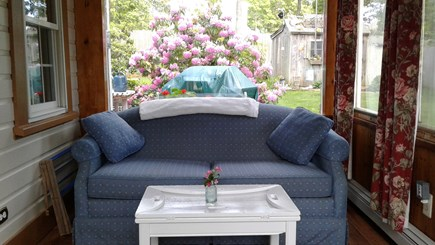Eastham Cape Cod vacation rental - Finished sunporch off lvng rm,pull out dble bed.Sunny a.m. coffee