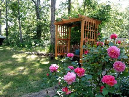 West Harwich Cape Cod vacation rental - Garden bench
