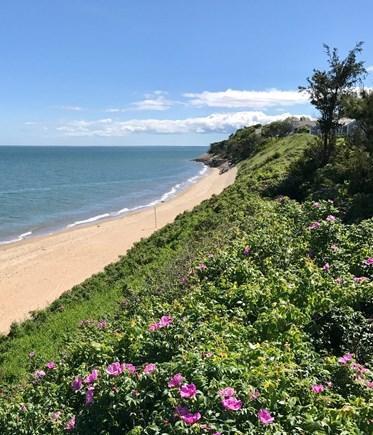New Seabury, Maushop Village  New Seabury vacation rental - Beautiful Maushop Village Private Beach in 2018.